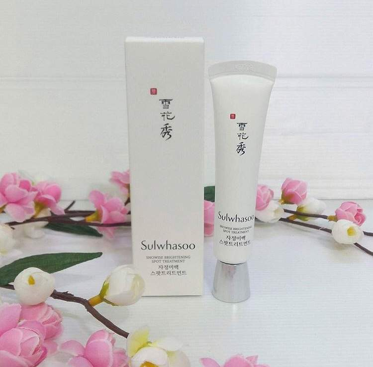 Snowise Brightening Spot Treatment